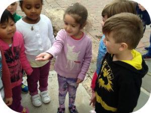 brooklyn park kindergarten